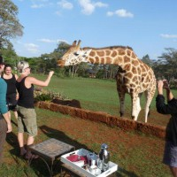 Educational Trip to Giraffe Manor