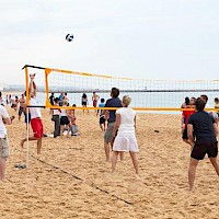 Volley Ball Teambuilding