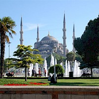 Blue Mosque Garden View